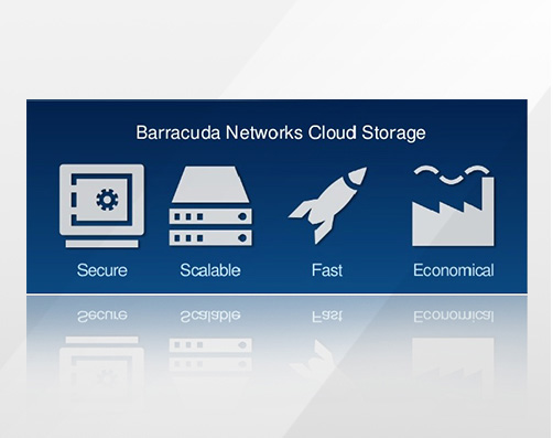 BBSIV90a-k1 - Barracuda Backup Vx 1 Year License %C Sockets