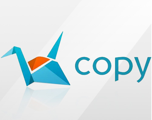 CPCI500a12 - Copy for Companies Account () and 1 Year New User License