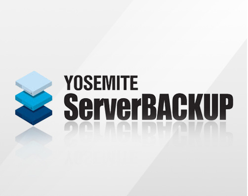 SBBI100-e1 - Yosemite Server Backup 1 Year Enhanced Maintenance and Support